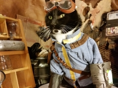 Fallout animal cosplay