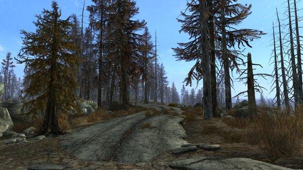 дороги пустоши