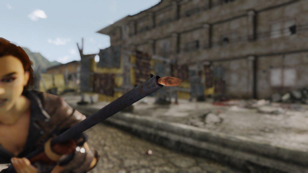 FalloutNVDX223219.jpg